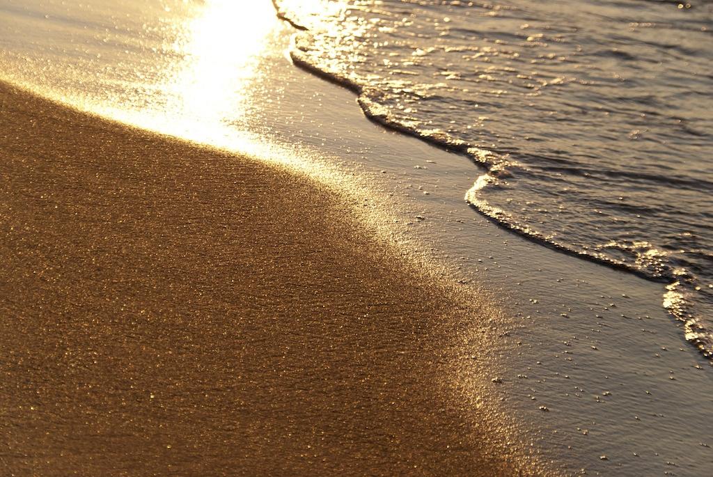 Distretto della costa a burocrazia zero, ma non per le spiagge. Legacoop Romagna: «È un evidente paradosso»