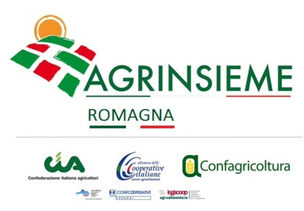 Maltempo in Romagna, Agrinsieme chiede lo stato di calamità