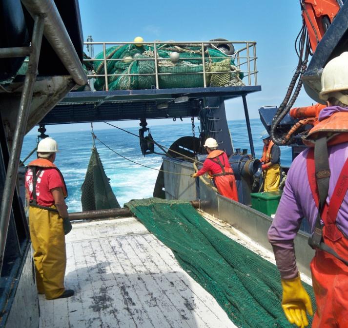 Fondi per il fermo pesca bloccati da due anni