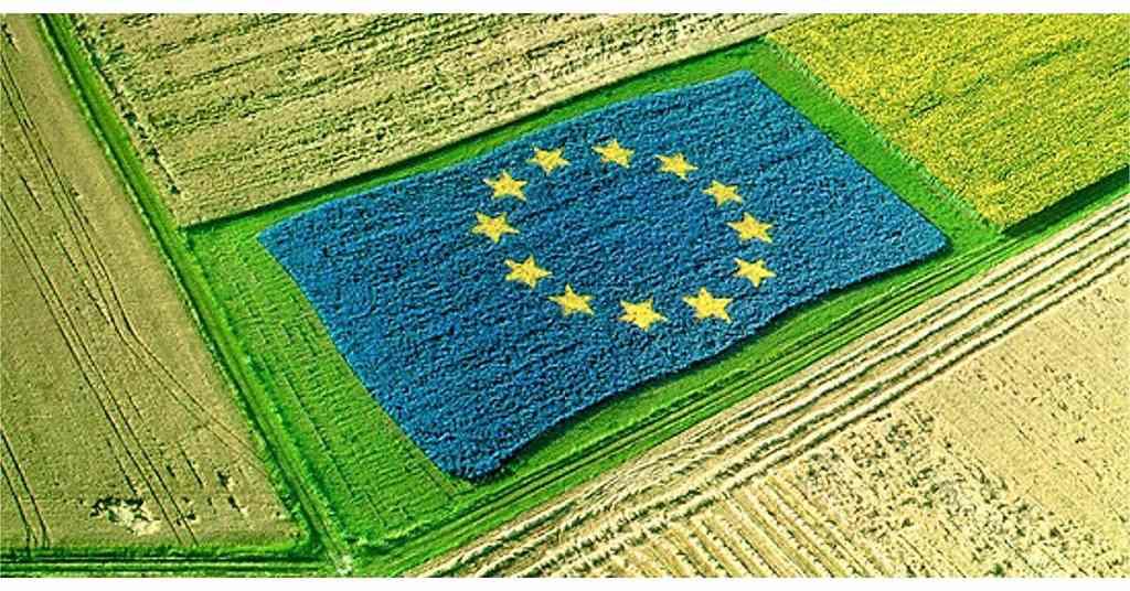 Agroalimentare e pratiche sleali: sì a proposta nuova direttiva
