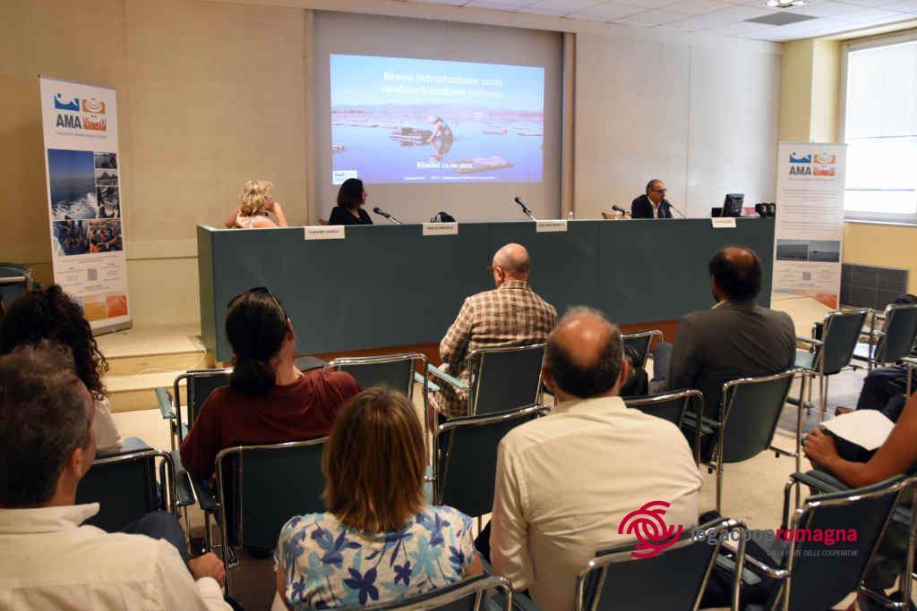 Plastica in mare, cooperative e istituzioni si interrogano