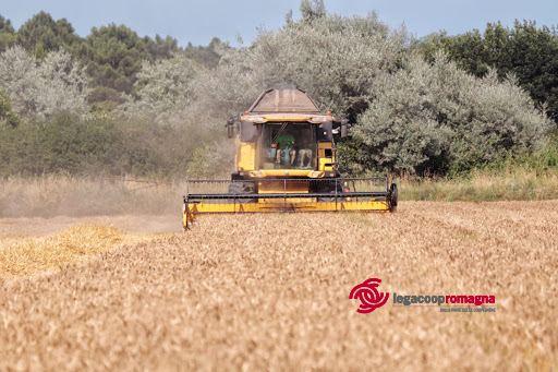 Cooperativa seleziona persone per l'agricoltura di precisione