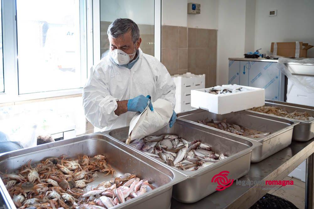 La cooperativa dei pescatori di Cesenatico dona pesce fresco ai bisognosi